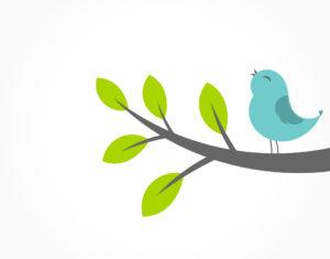 Langue des oiseaux, LE coaching thérapie Vibratoire plein de Sens et de Magie